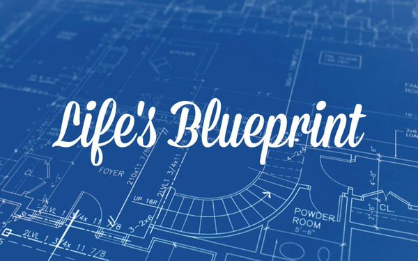 Life's Blueprint